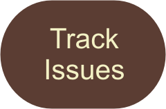 Track Issues